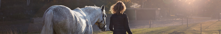 Frau läuft neben Pferd