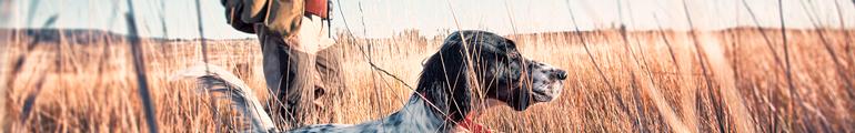 Mann mit Hund im Feld