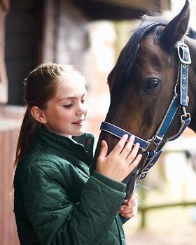 Mädchen streichelt Pferdenase