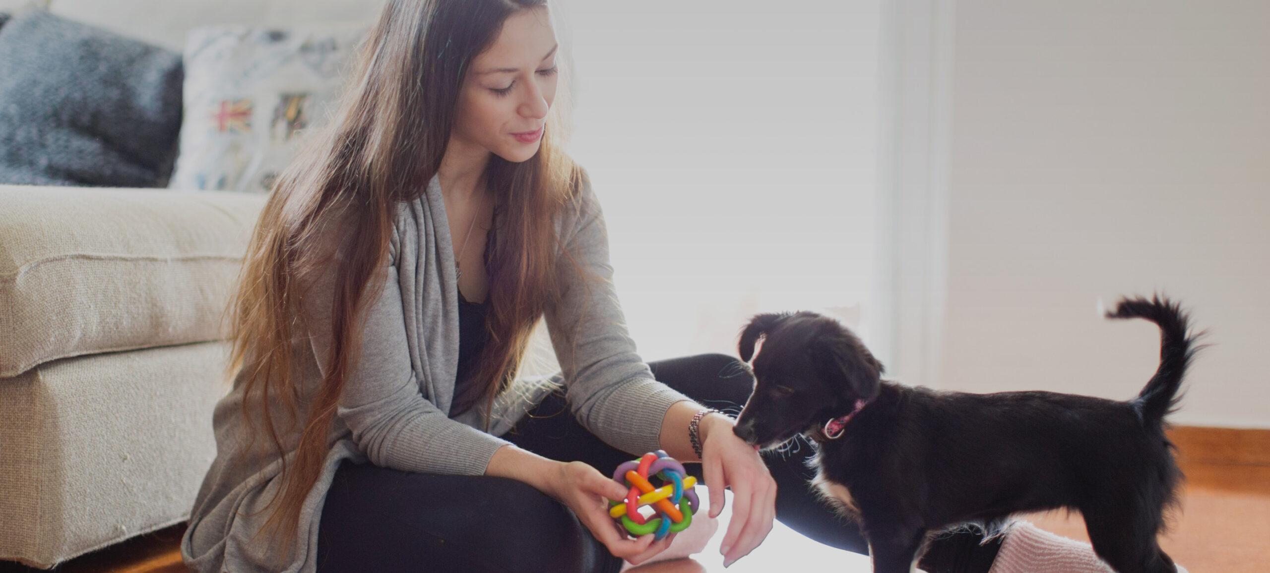 Frau spielt mit Hund in Wohnung