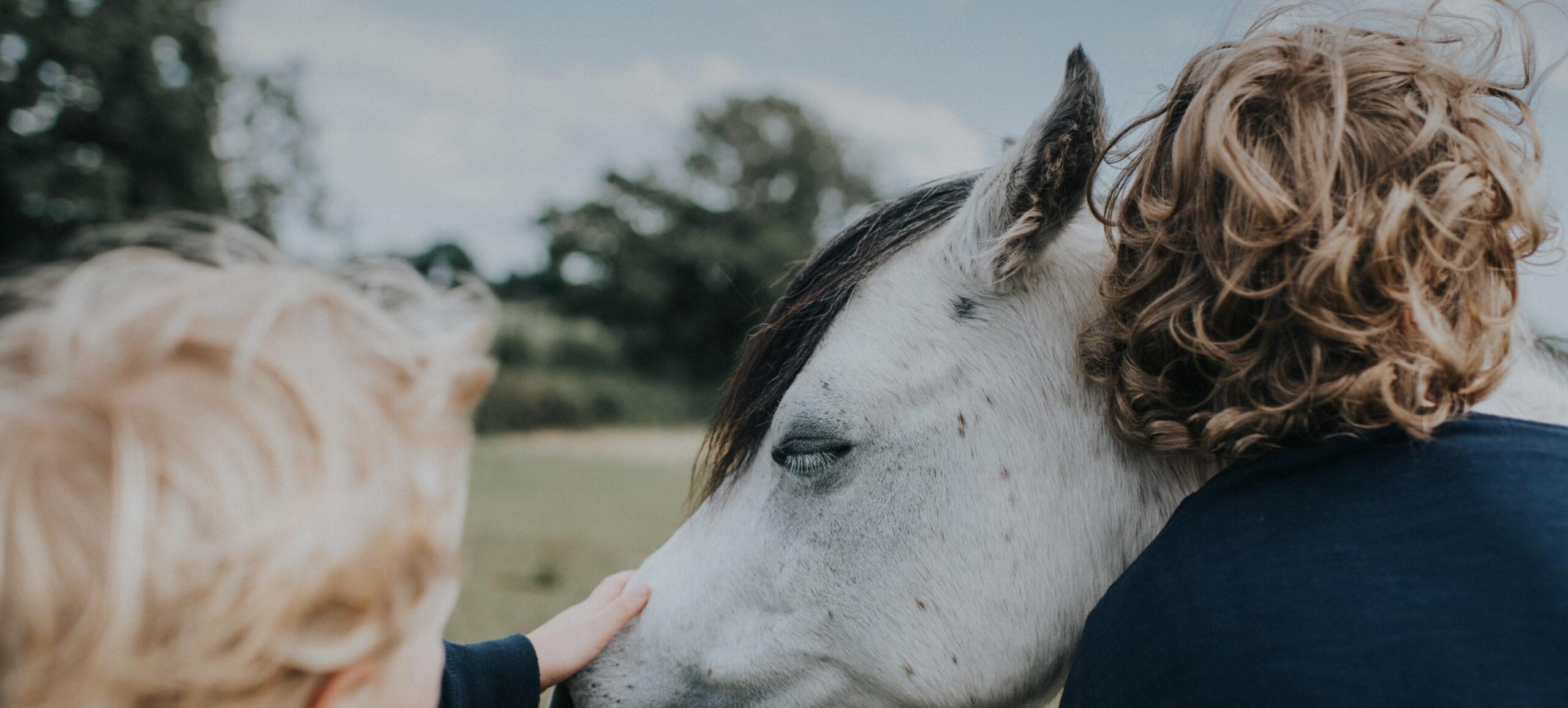 Kind streichelt Pferd und zweite Person schmiegt sich an Pferd