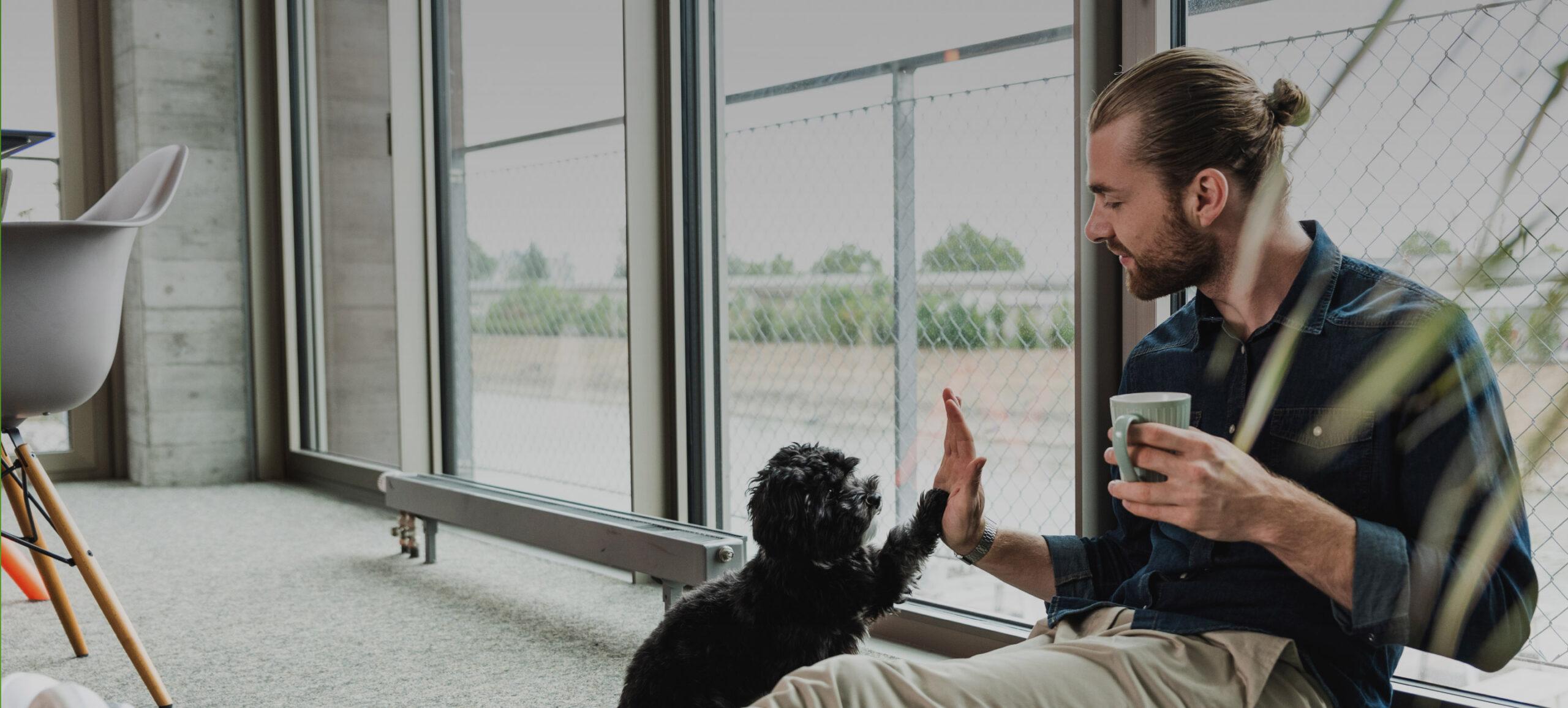 Mann sitz am Fenster und macht High-Five mit seinem Hund
