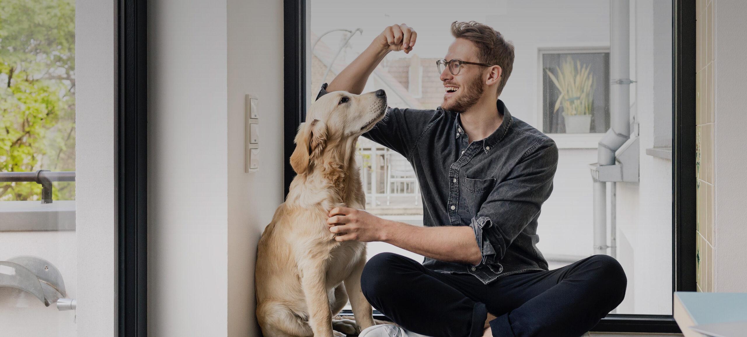 Mann und Hund sitzen vorm Fenster, Hund blickt aufmerksam zum Mann